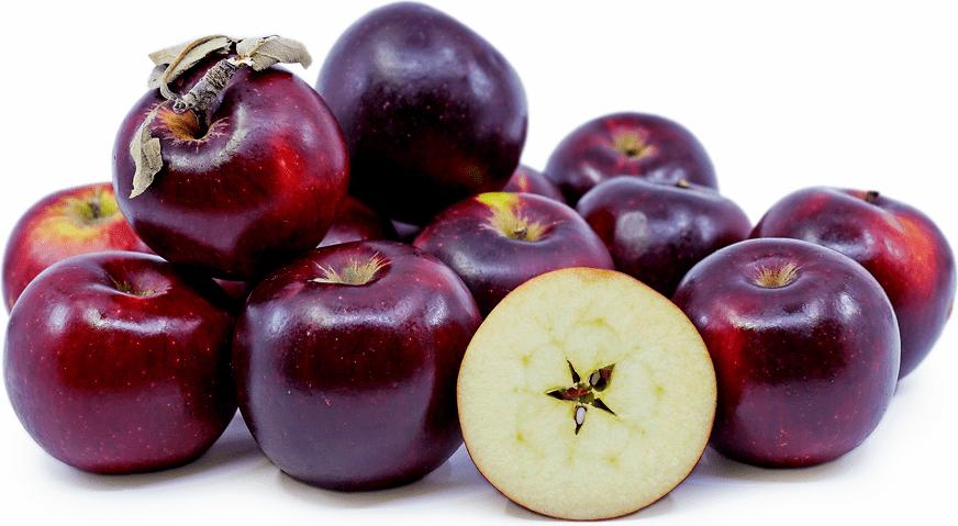 فاصله کاشت درخت سیب مشکی