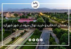 خرید و فروش عمده نهال میوه شناسنامه دار جهادکشاورزی در شهرکرد