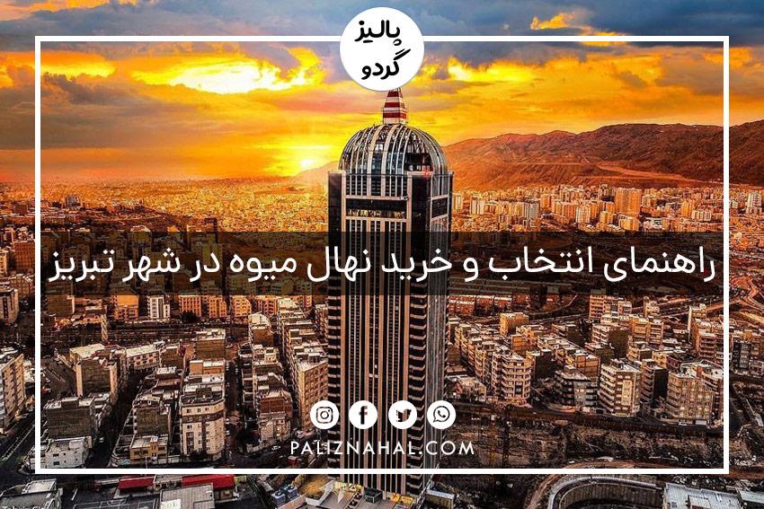 خرید و فروش عمده نهال میوه شناسنامه دار جهادکشاورزی در تبریز